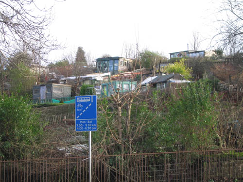 allotment 01